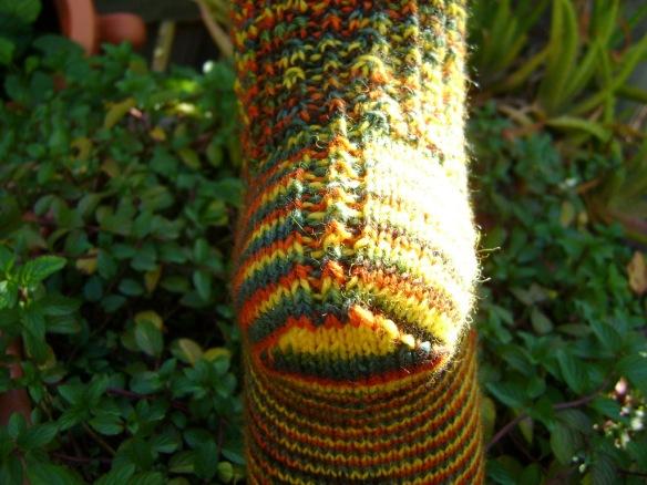 Murgrona Socks 5