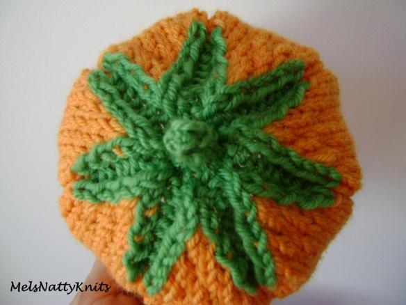 Pumpkin Hat 04